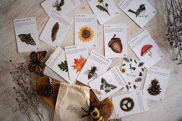Nature Flash Cards