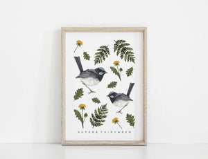 Superb Fairy Wren Art Print