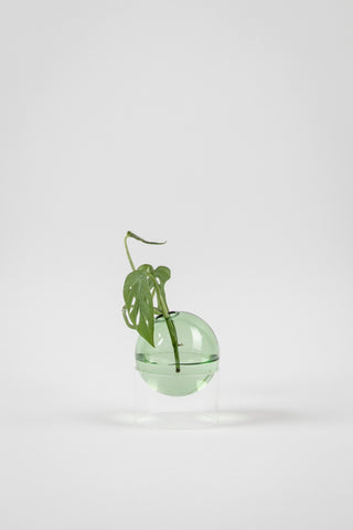 STANDING FLOWER BUBBLE, LOW TUBE - Farve: Green