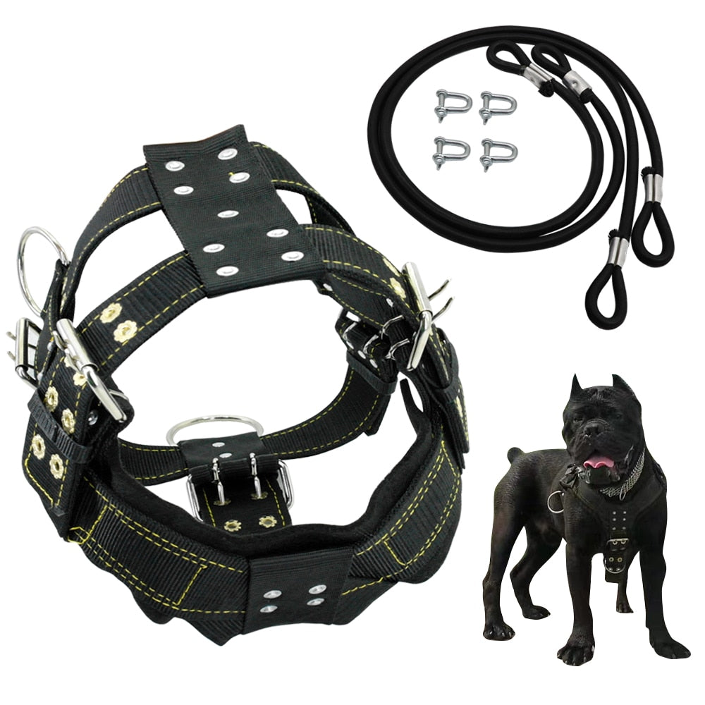 K9 Durable Dog Harness and Leash for Medium Large Dogs