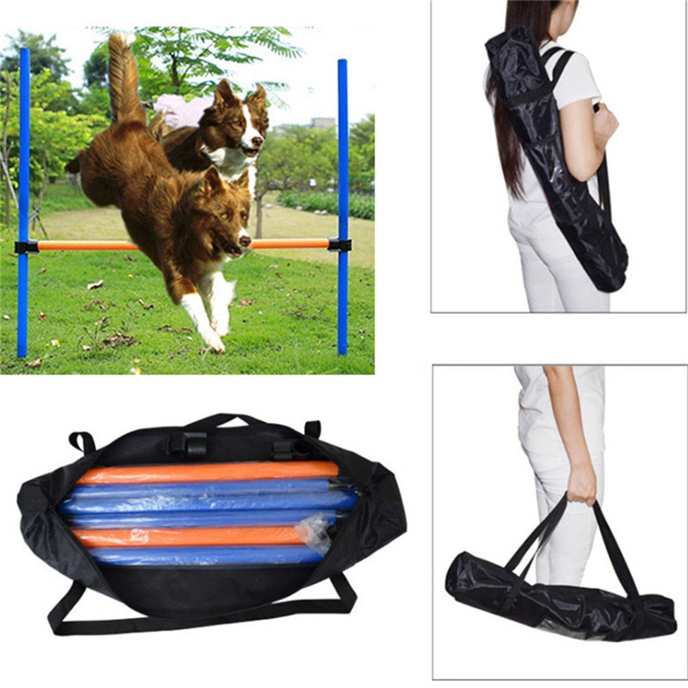 Dogs Outdoors Games Exercise Training Equipment