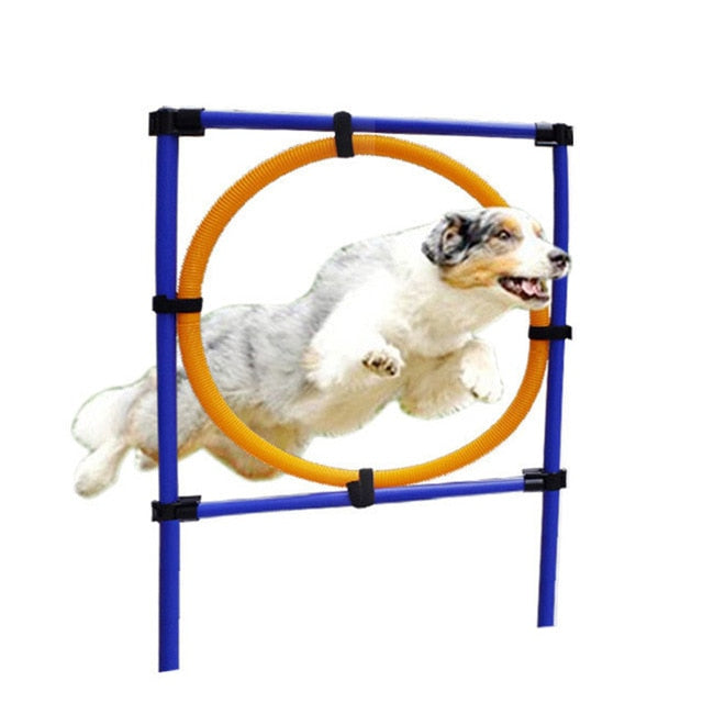 Outdoors Pet Dogs Games Exercise Training Equipment Barrier