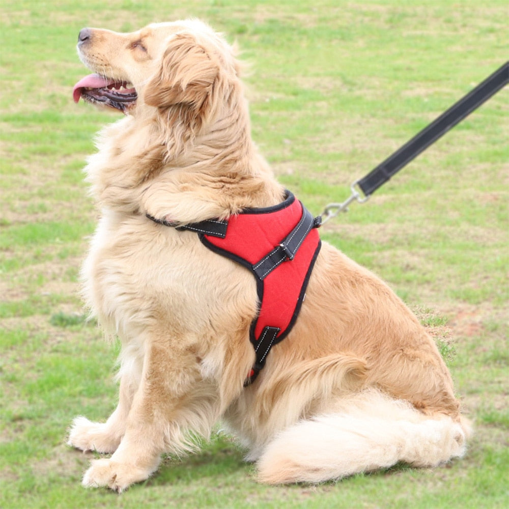 Reflective Dog Harness Large Dogs Walking Safety