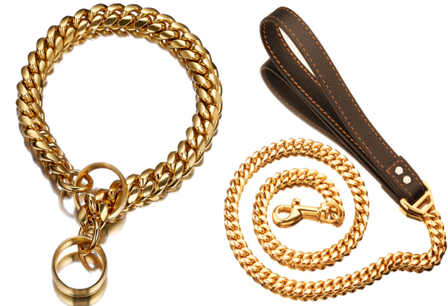 Gold Chain Dog Collar/Leash