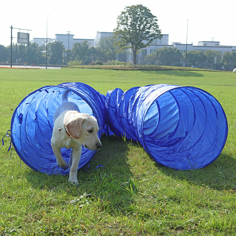 5 m Dog Agility Tunnel Equipment Puppy Training Obedience Activity Toy