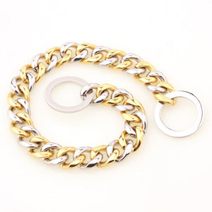 Training Collar Choker Silver Gold Stainless Steel