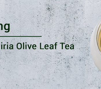 Empowering Health with Oliria Olive Leaf Tea - oliria