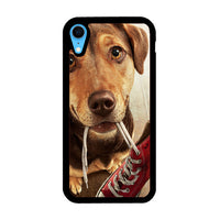A Dog Way Home Movies Artwork iPhone XR Case