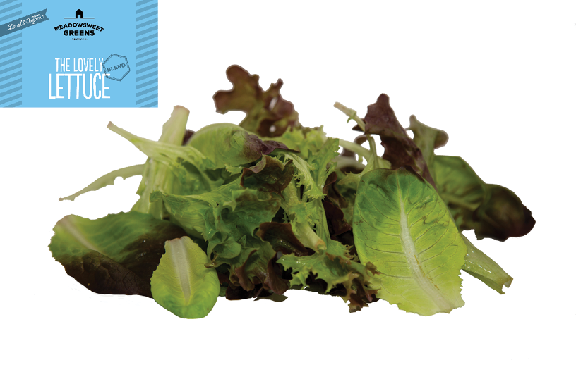 Lovely Lettuce Blend (150g Bag)