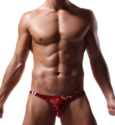 Men Briefs Underwear Swimsuit menbathingsuit.com