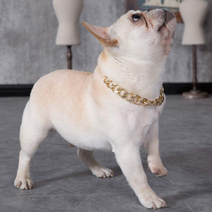 Doggy Bling - Gold Dog Chain