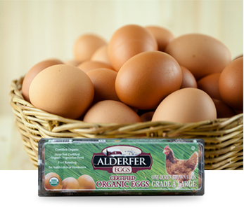 Organic Cage-Free Large Brown Eggs