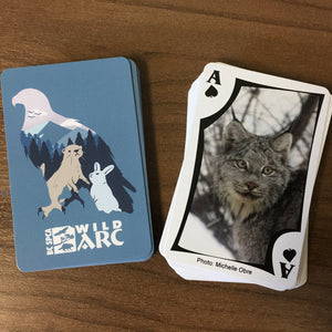 Wildlife-In-Focus Playing Cards