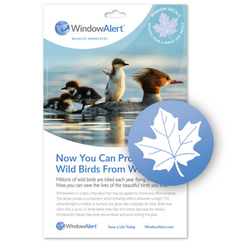 WindowAlert Bird Saver Window Decal - Maple Leaf