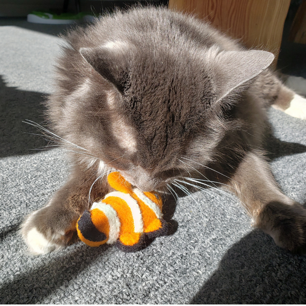 Cat Toys - Under the Sea