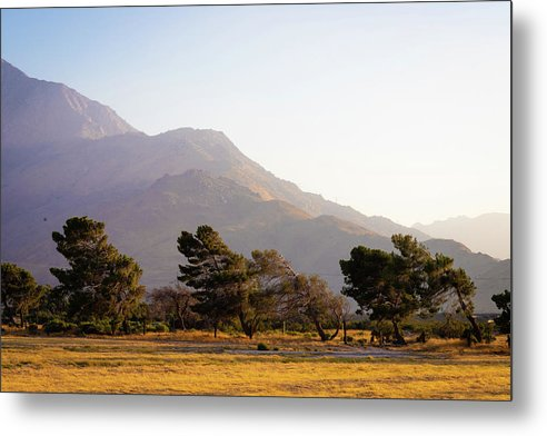 California Sceneries - Metal Print