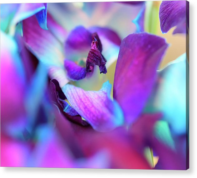Watercolor Lilies  - Acrylic Print