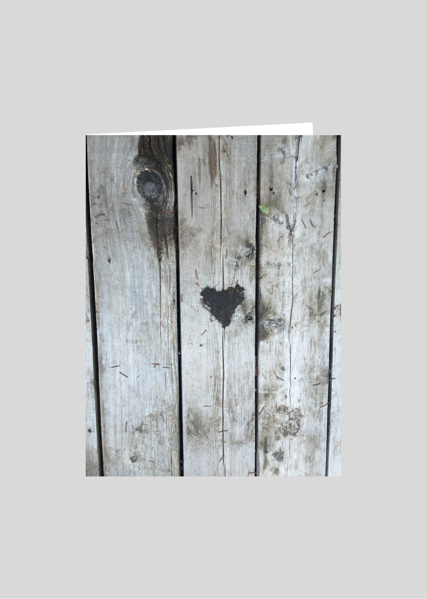 greeting card original photography heart nature