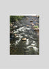 greeting card original photography heart nature river