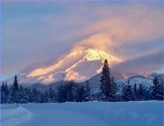 The Magical Presence of Mt Shasta Note Card  (#2)
