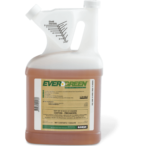 Evergreen Pyrethrum Concentrate (Insecticide) - 1 Gallon