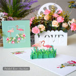 Bolini Pop Up Card