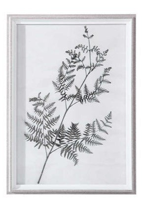 Botanical Framed Print - Botanical 4
