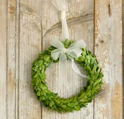 Preserved Boxwood Wreaths with Ivory Ribbon - Medium