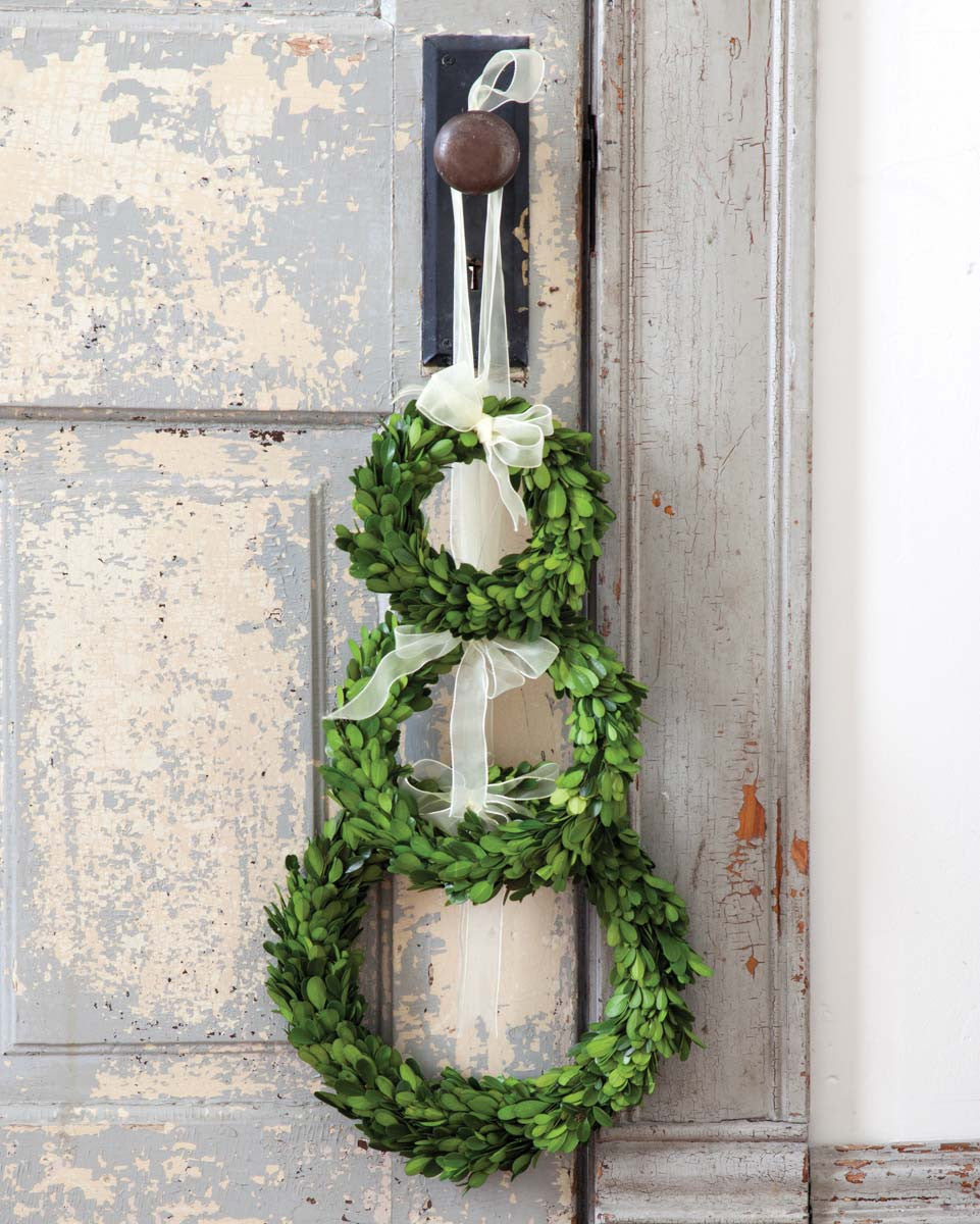 Preserved Boxwood Wreaths with Ivory Ribbon - Large