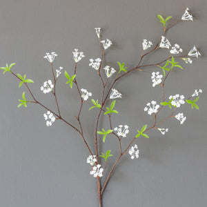 Bridal Wreath Spirea Stem