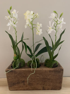3 Hole Sugar Mold with Orchids