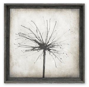 Nature's Sparkler - Shelf Artwork