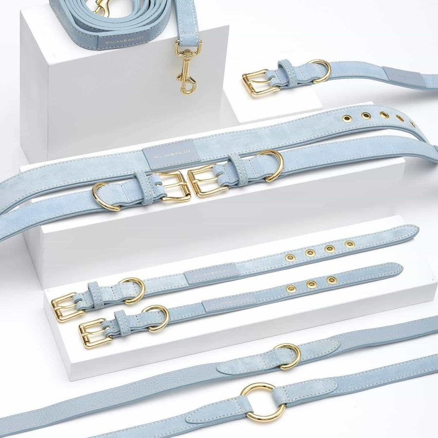 William Walker Leder Hundehalsband Sky - ilio-shop