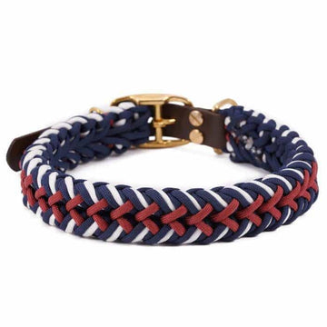 William Walker Paracord Hundehalsband Royal - ilio-shop