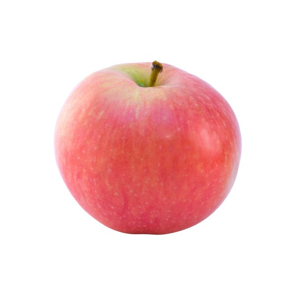 Organic Akane Apples - Medium - BC - Each