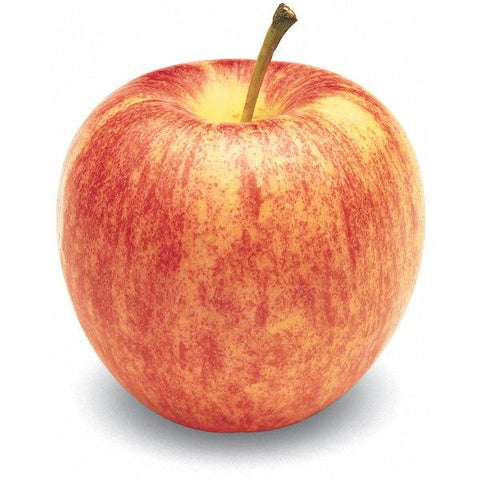 Organic Gala Apples - Large - BC - Each