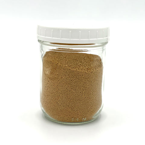 Active Baking Yeast - 250g - Medium Jar