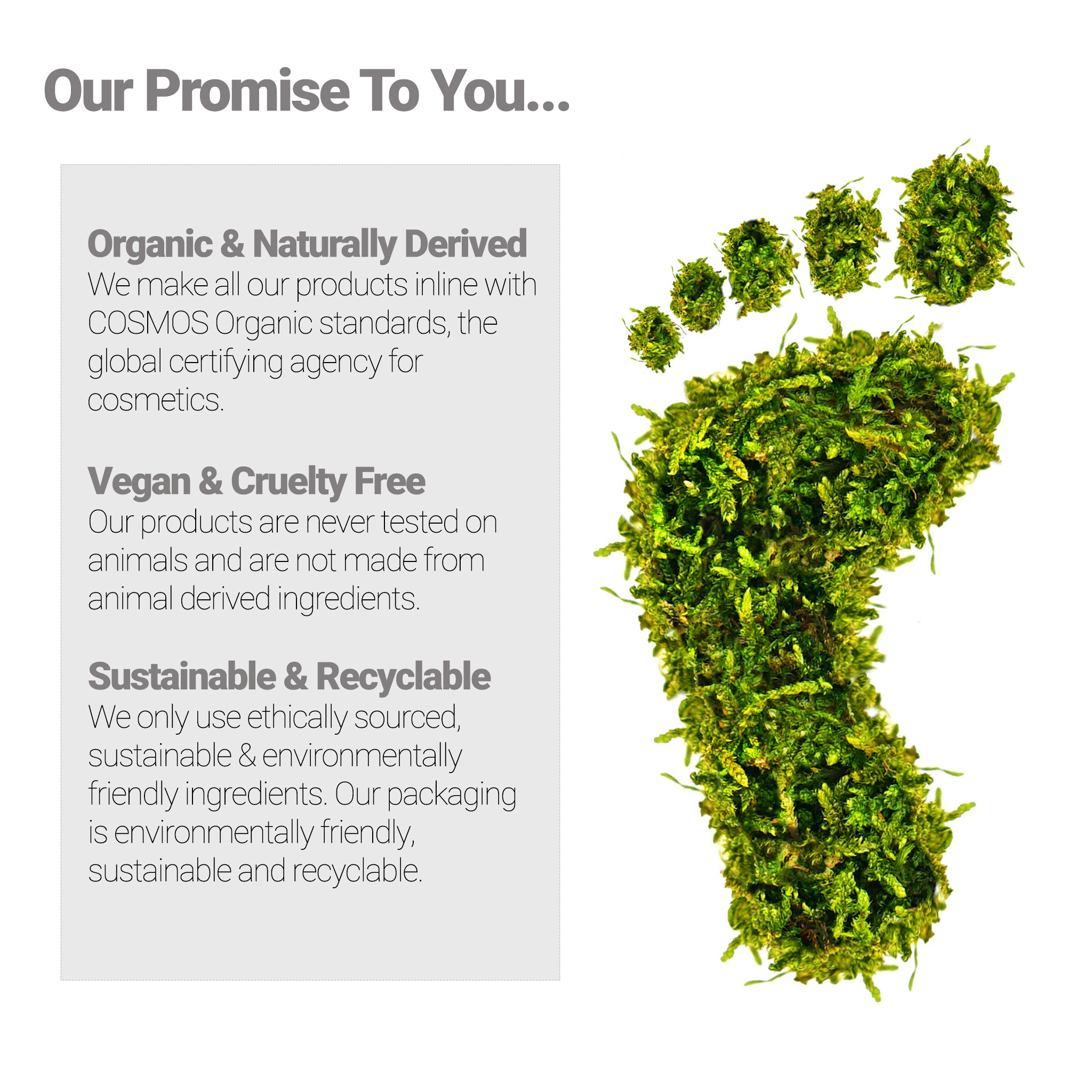 Sustainable skin care. Pure organic ingredients and recyclable packaging.