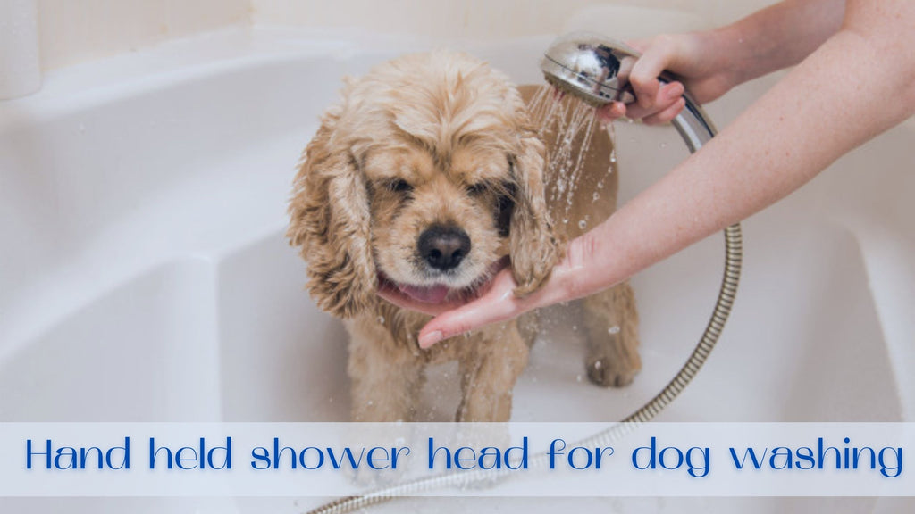 Image-hand-held-shower-head-for-dog-washing