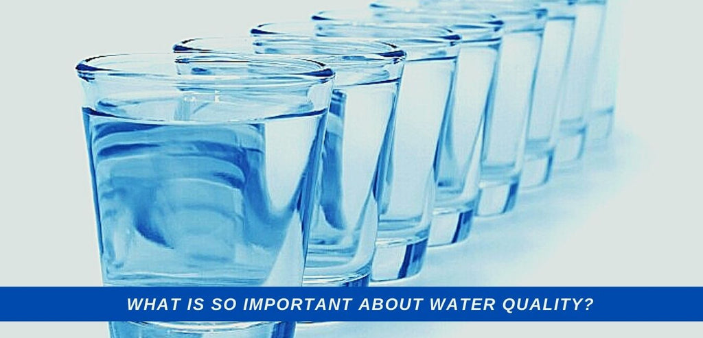 Image-what-is-so-important-about-water-quality