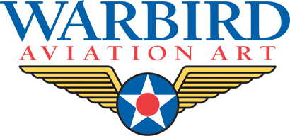 Warbird Aviation Art