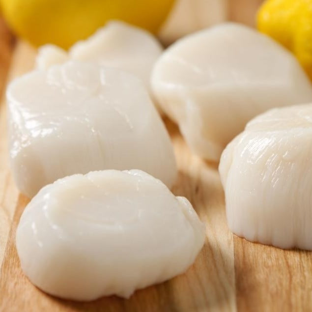 Locally Sourced Dayboat NJ Scallops - 1lb - Illuminate Food