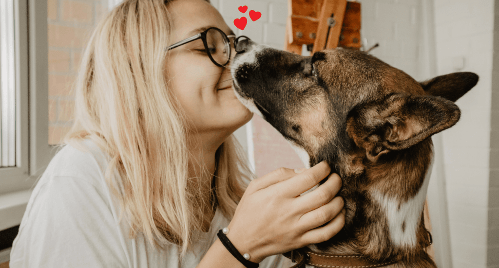 14 Reasons Why Your Dog Is The Best Palentine's Day Date