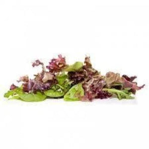 Lettuce - Mesculin Mix