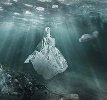 Load image into Gallery viewer, plastic bags look like jelly fish to a turtle