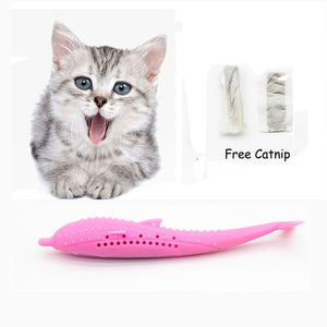 Cat Toothbrush Toy Fish Shape Catnip Flavor