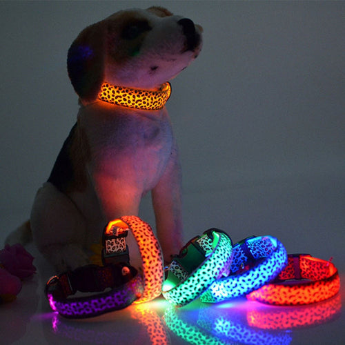 Dog Collar Flashing In Dark 3 Mode Lighting Safety Adjustable Nylon Luminous Leopard Pet Collar