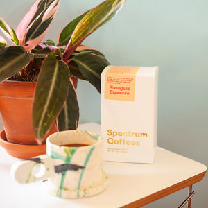 A bulk bag of Spectrum Coffees Rosegold Espresso blend, sitting in front of a plant with a mug.