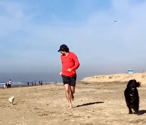 A man in a bright red shirts run on the beach with a big black dog in front of him and a small white dog behind him