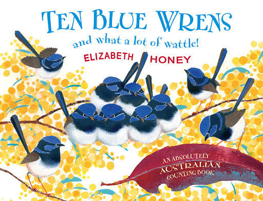 Ten Blue Wrens and what a lot of wattle!